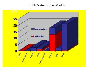 SEE Natural Gas Market