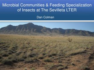 Microbial Communities & Feeding Specialization of Insects at The Sevilleta LTER