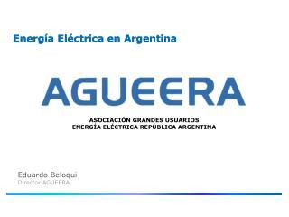 Energía Eléctrica en Argentina