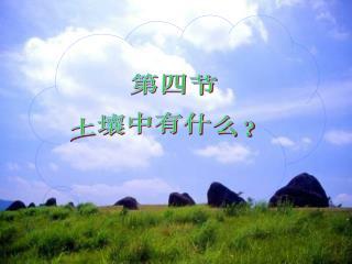第四节 土壤中有什么?