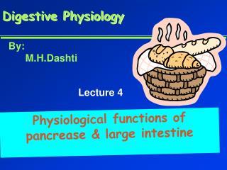 Digestive Physiology