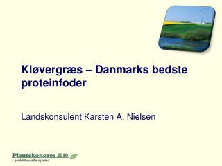 Kløvergræs – Danmarks bedste proteinfoder