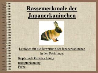 Rassemerkmale der Japanerkaninchen