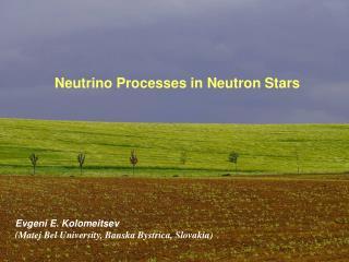 Neutrino Processes in Neutron Stars