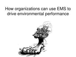 How organizations can use EMS to drive environmental performance
