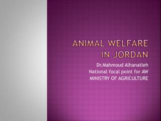 ANIMAL WELFARE IN JORDAN