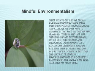 Mindful Environmentalism