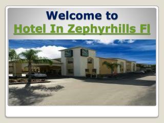 hotel in zephyrhills fl