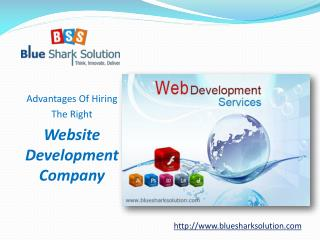 Advantages of hiring the right website development company: