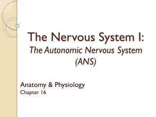 The Nervous System I: The Autonomic Nervous System (ANS)