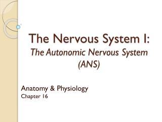 The Nervous System I: The Autonomic Nervous System (ANS)