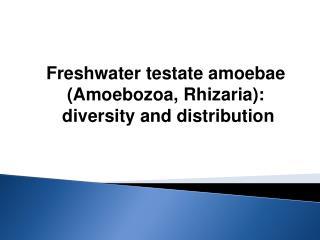 Freshwater testate amoebae  (Amoebozoa, Rhizaria):  diversity and distribution