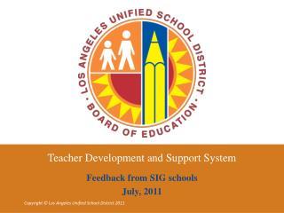 Teacher Development and Support System