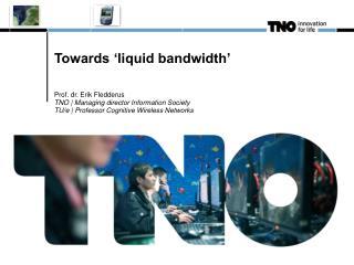 Towards 'liquid bandwidth'