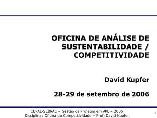 OFICINA DE ANÁLISE DE SUSTENTABILIDADE /  COMPETITIVIDADE  David Kupfer 28-29 de setembro de 2006