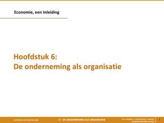 Hoofdstuk 6: De onderneming als organisatie