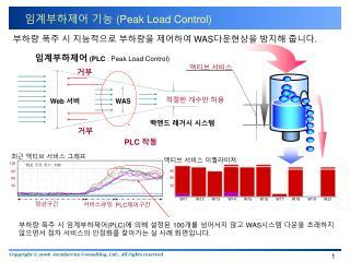 임계부하제어 기능  (Peak Load Control)