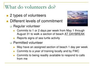 What do volunteers do?