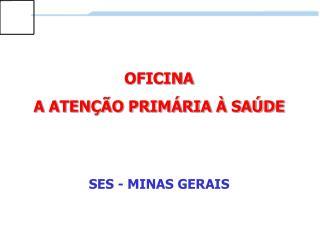 OFICINA A ATENÇÃO PRIMÁRIA À SAÚDE SES - MINAS GERAIS