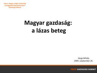 Magyar gazdaság:  a lázas beteg