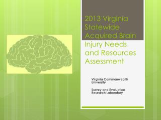 2013 Virginia Statewide  Acquired Brain  Injury  Needs and Resources  Assessment