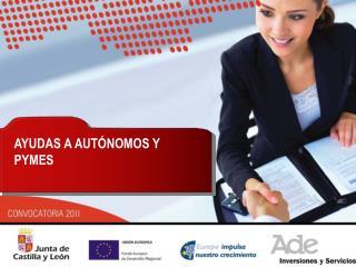 AYUDAS A AUTONOMOS Y PYMES 2011