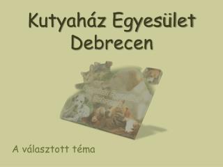 Kutyaház Egyesület Debrecen