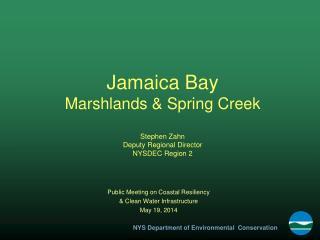Jamaica Bay Marshlands & Spring Creek Stephen Zahn Deputy Regional Director NYSDEC Region 2