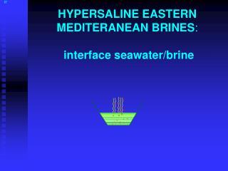 HYPERSALINE EASTERN MEDITERANEAN BRINES : interface seawater/brine