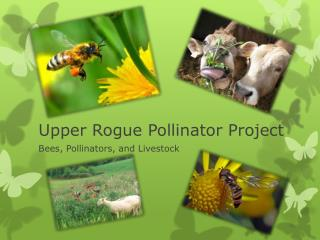 Upper Rogue Pollinator Project