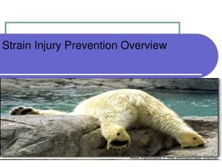 Strain Injury Prevention Overview