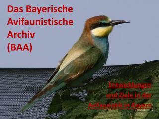 Das Bayerische Avifaunistische Archiv   (BAA)