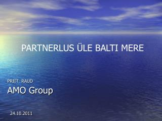 PRIIT RAUD AMO Group 24.10.2011