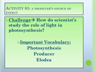 Activity 81:  a producer's source of energy