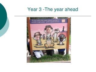 Year 3 -The year ahead