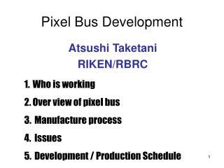 Pixel Bus Development