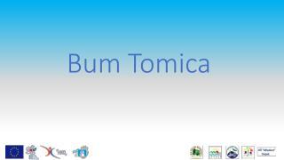 Bum Tomica
