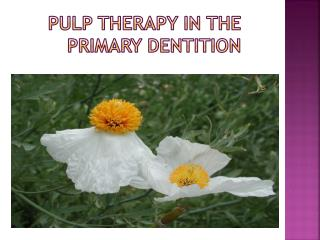 Pulp Therapy in the Primary dentition