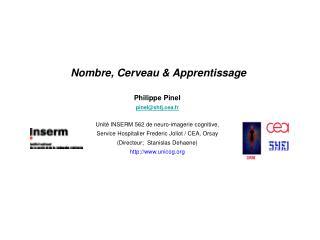 Nombre, Cerveau & Apprentissage