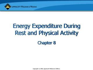 Energy Expenditure During Rest and Physical Activity