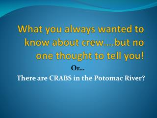 What you always wanted to know about crew….but no one thought to tell you!