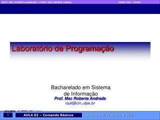 Prof. Msc Roberta Andrade raaf@cin.ufpe.br