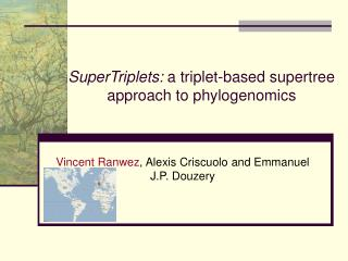 SuperTriplets:  a triplet-based supertree approach to phylogenomics