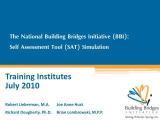 The National Building Bridges Initiative (BBI):   Self Assessment Tool (SAT) Simulation