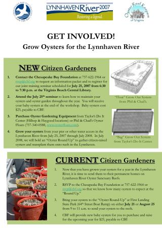 GET INVOLVED!                                        Grow Oysters for the Lynnhaven River