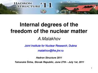 Internal degrees of the freedom of the nuclear matter