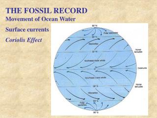 THE FOSSIL RECORD Movement of Ocean Water Surface currents Coriolis Effect