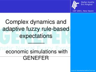 Complex dynamics and adaptive fuzzy rule-based expectations  economic simulations with GENEFER