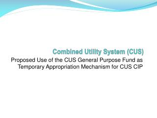 Combined Utility System (CUS)