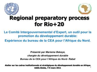 Regional preparatory process for Rio+20